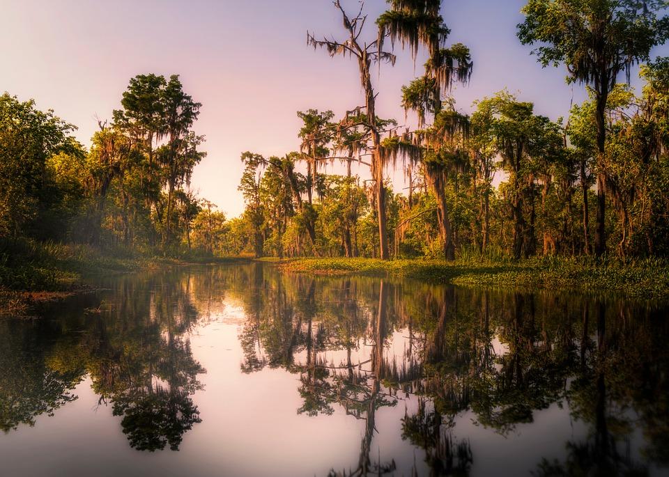 Vue sur un bayou au coucher du soleil