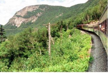Train dans la forêt des White Mountains