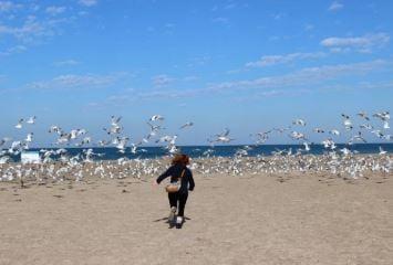 Jeune courant sur une plage